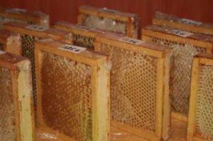 Cadrons de miel