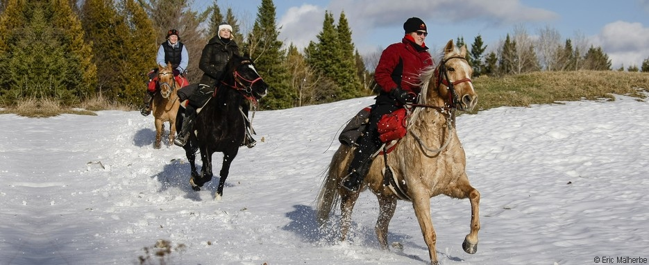 cavalngo_randonnee_equestre_neige_canada_1_large