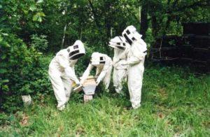 Formation apiculteurs amateurs