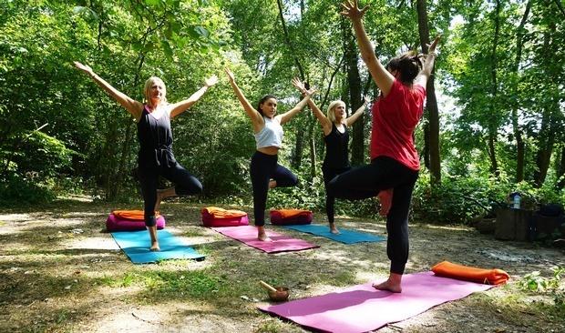 Gym zen en forêt