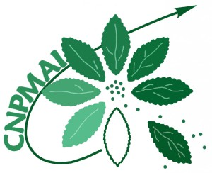 Logo CNPMAI