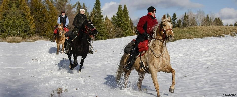Randonnée équestre sous la neige au Canada