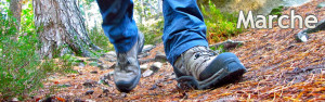 Marche à pieds - Nemorosa