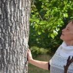 La Forêt qui Parle
