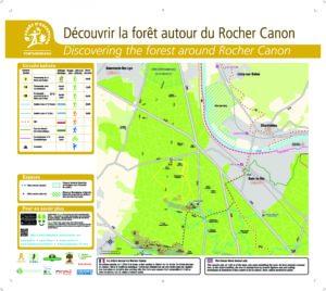 Découvrir la forêt autour du Rocher Canon