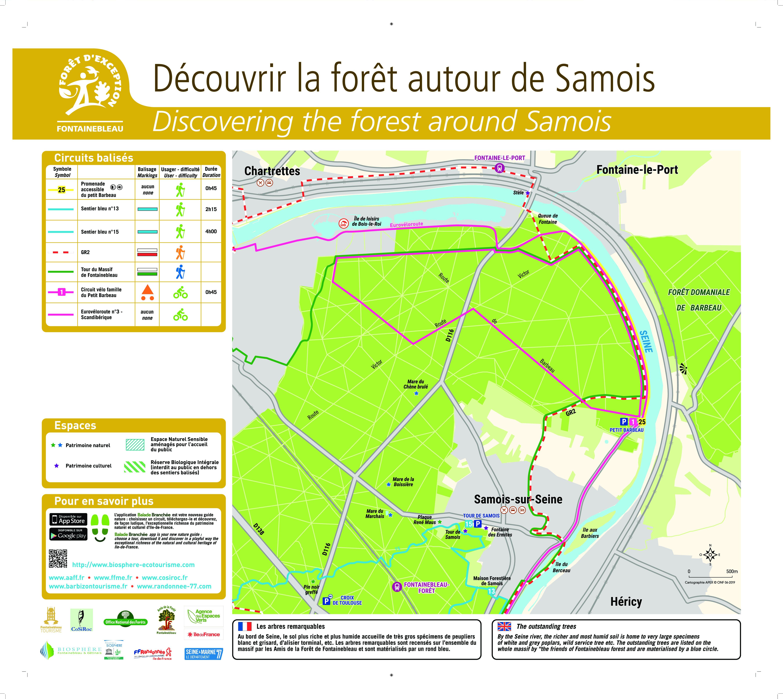 Balades en forêt autour de Samois