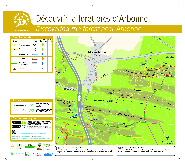 Balades en forêt près d'Arbonne