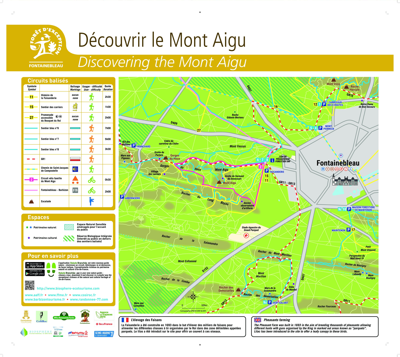 Balade en forêt au Mont Aigu