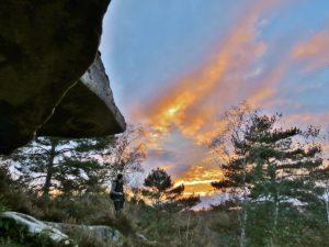 EXCURSION GEOLOGIQUE  EN FORET DE FONTAINEBLEAU